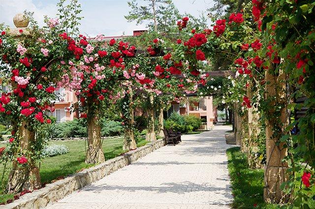 Отель Riviera Анапа